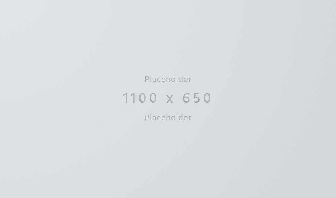 1100x650-light